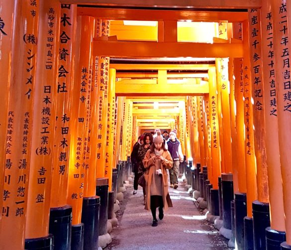 Travel Tips for Japan